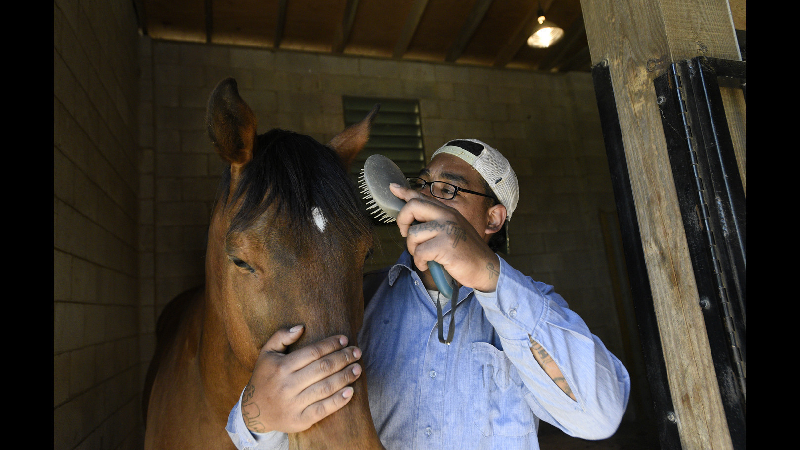Second Chances: Horse farm offers inmates opportunity to learn job