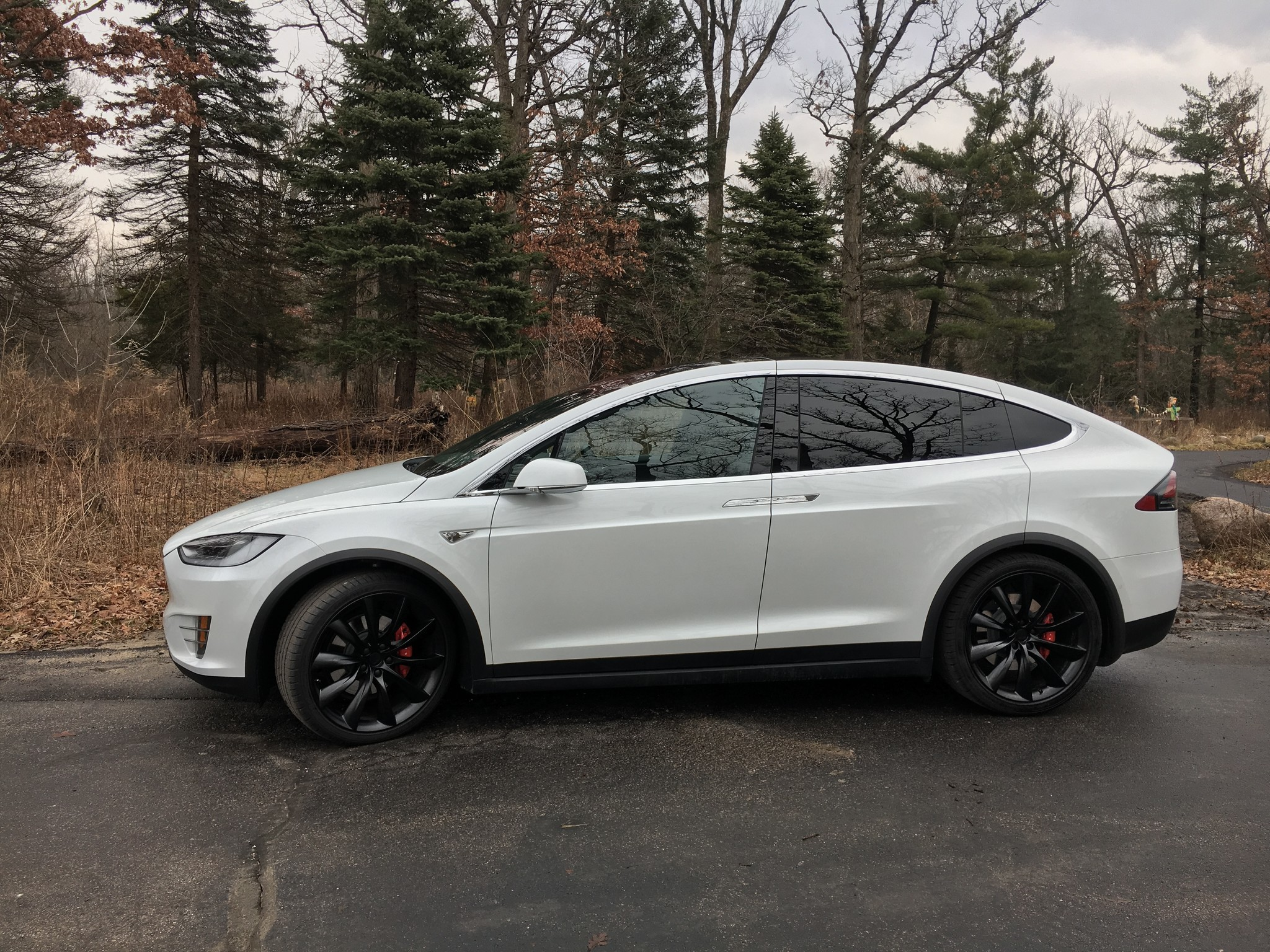 Tesla Model X P100D is the stuff of dreams - Chicago Tribune