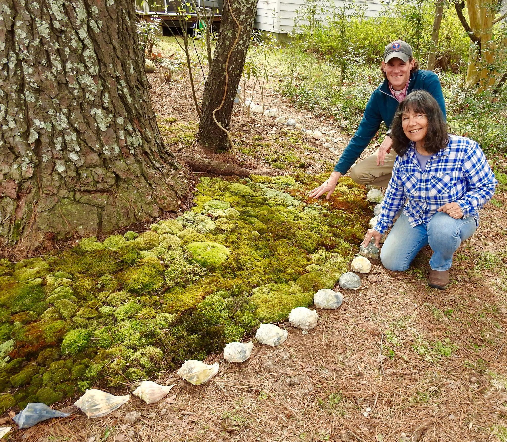 Moss Gardens Create Patchwork Quilts Of Many Colors And Textures