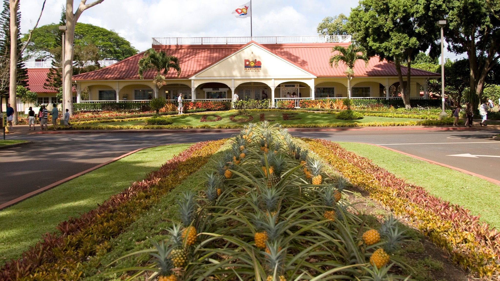 Where to find fresh pineapple (and learn its history) in Hawaii